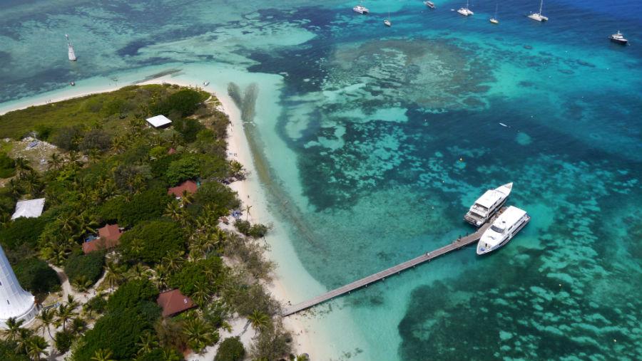 Amedee Island Reef Cruise
