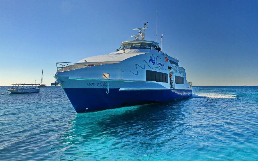 Amedee Island Cruise