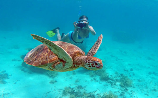 New Caledonia Reef Cruises