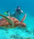 New Caledonia Reef Cruises